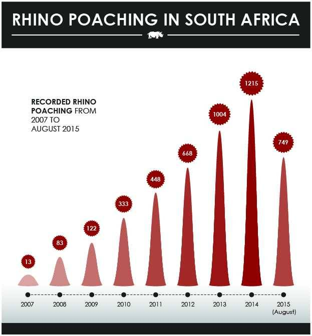 Rhino Poaching stats in South Africa