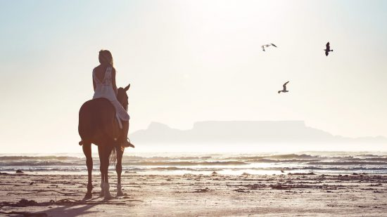 Horse riding on Cape Town's beach