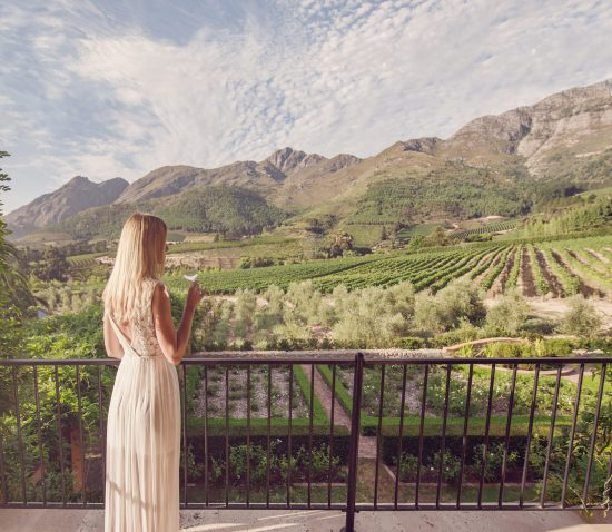 The spectacular view within the Winelands