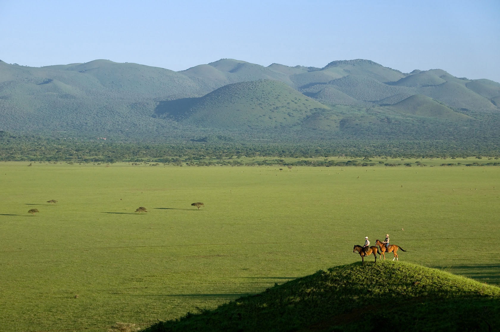 Kenya-Great-Migration-Horse-Tourjpg