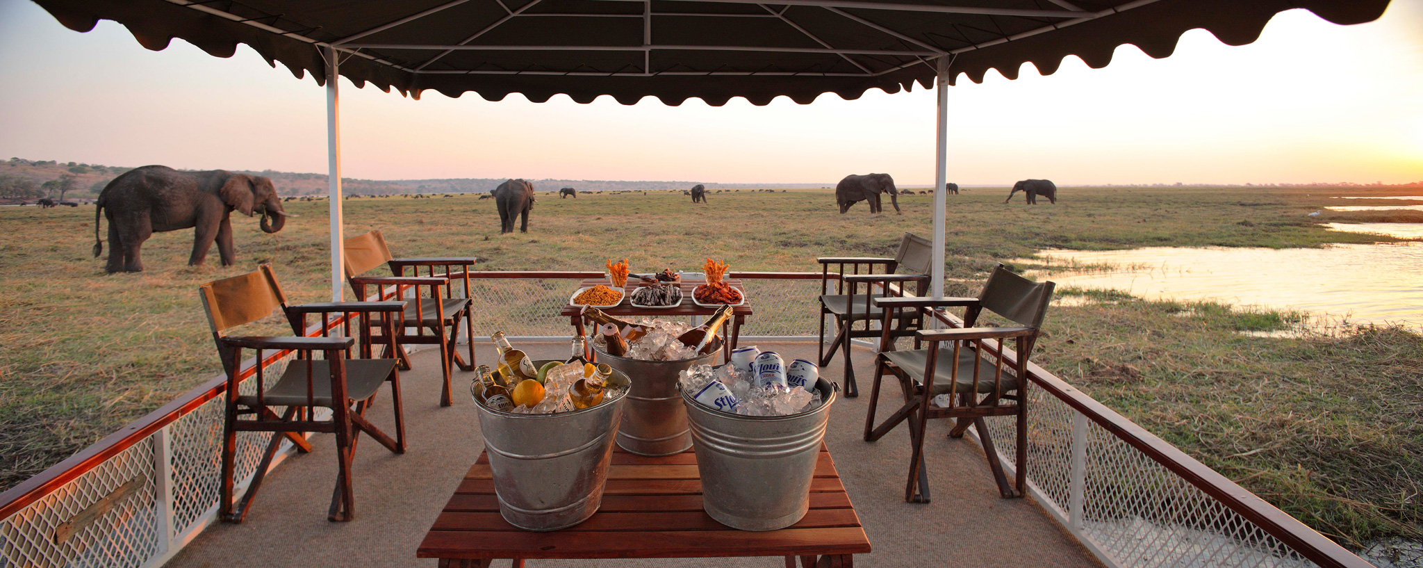 Sundowners-with-elephants-in-Botswana