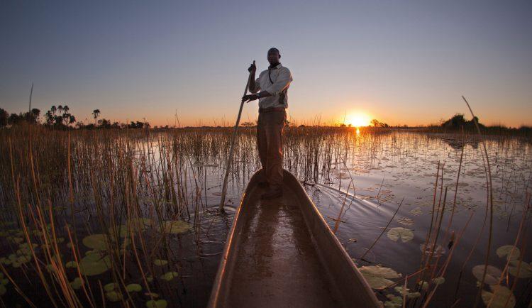 Nénuphares et coucher de soleil pour un safari au fil de l'eau au Botswana.