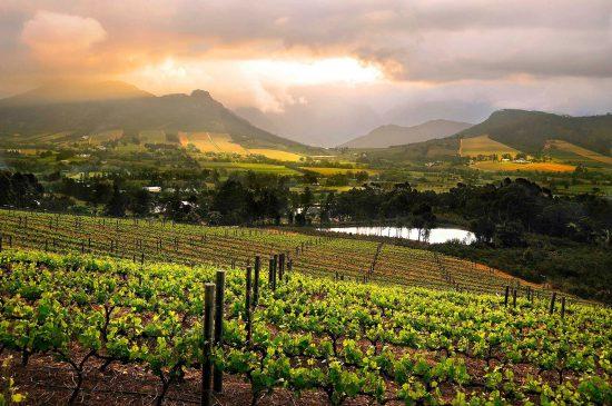 La Route des vins en Afrique du Sud | Franschhoek