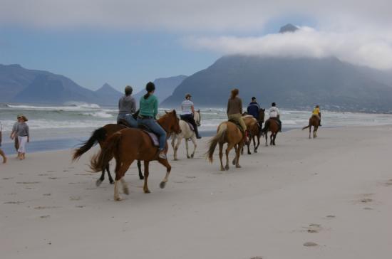 Horse riding on Noordehoek Beach in Cape Town