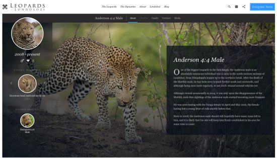 The website for Leopards of Londolozi