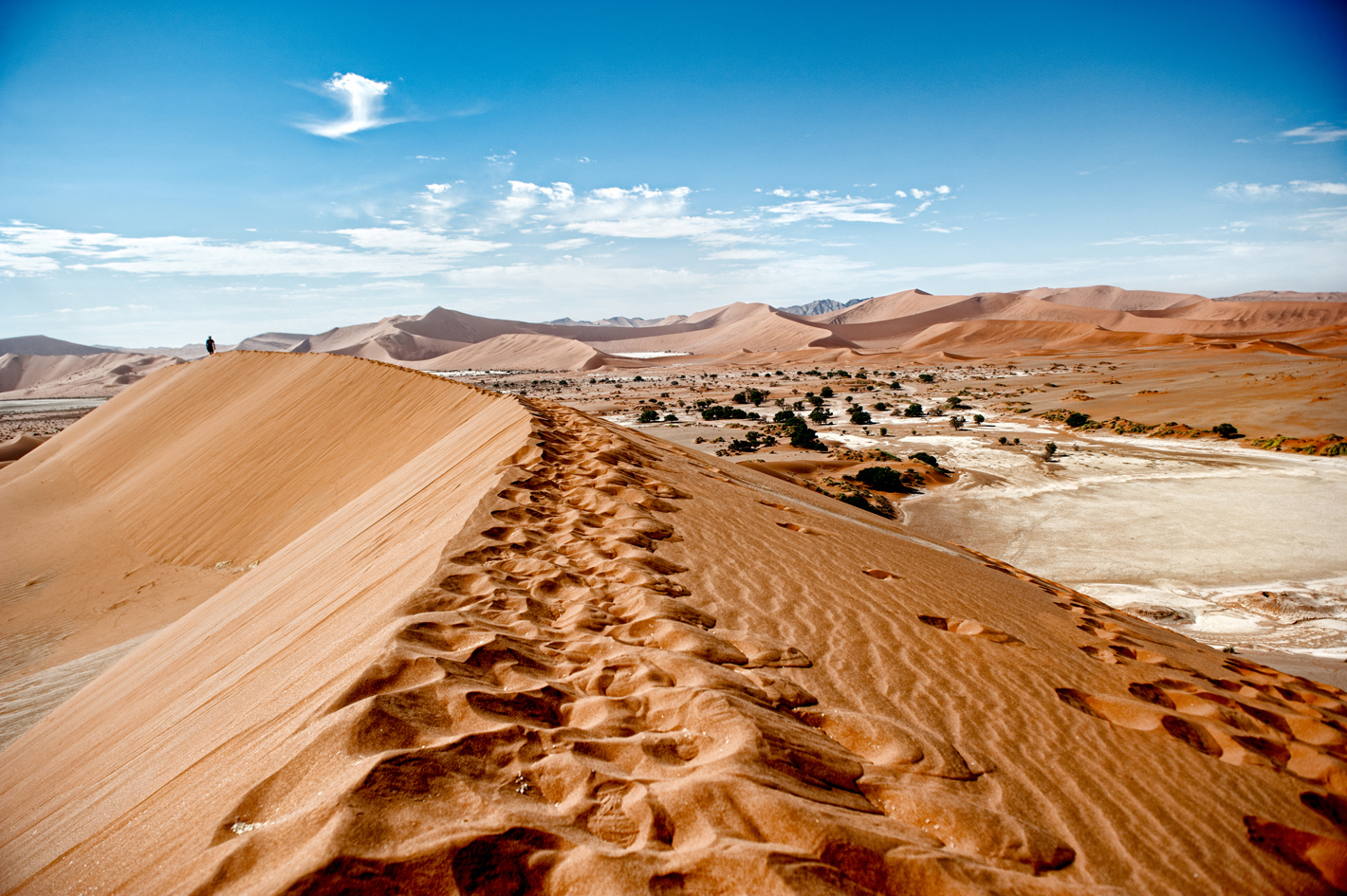 Footprints in Namibian dunes