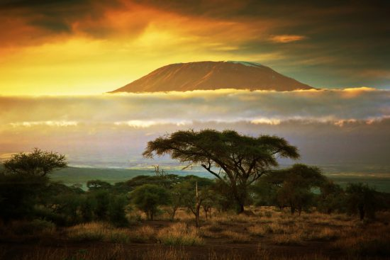 Kilimanjaro rising above clouds