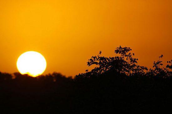 The golden sunrise at Kruger