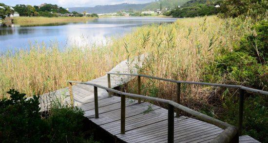 Perfect boardwalk to unwind at Wilderness