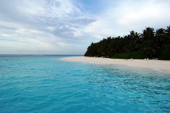 fihalhohi beach maldives