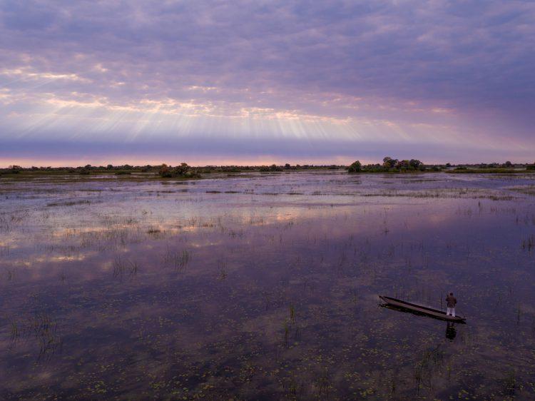 stunning okavango delta