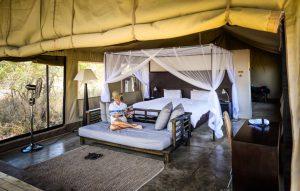 Vue de l'intérieur d'une tente au Honeyguide Khoya Moya Camp