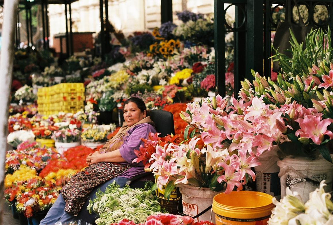Adderley Street Flower Seller