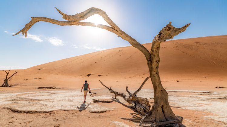 Das berühmte Dead Vlei in Namibia