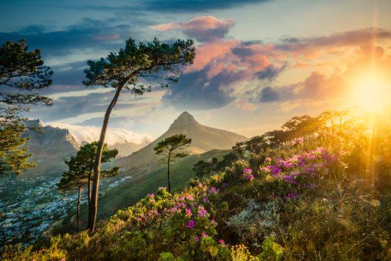 Vue au lever du soleil de Lion's Head depuis Table Mountain au Cap.