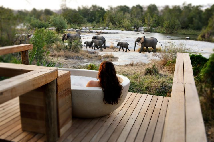 Badewanne an der Schwelle zum Busch
