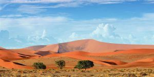panorama des paysages de dunbes de sable orange sossusvlei namibie