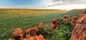 Paysage verdoyant du Waterberg National Park, Namibie
