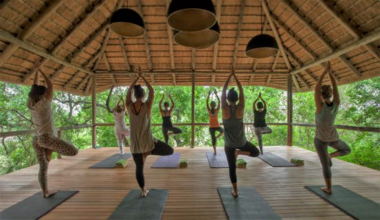 yoga lesson in the safari lodge