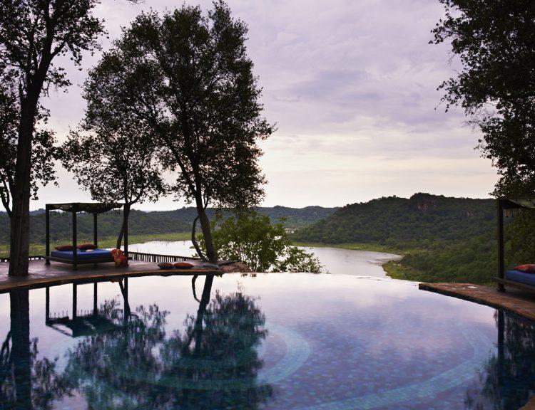Ein Pool, dahinter ein Wald und ein Sonnenbett