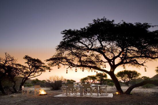 Dîner sous les acacias dans la réserve privée de Tswalu en Afrique du Sud.