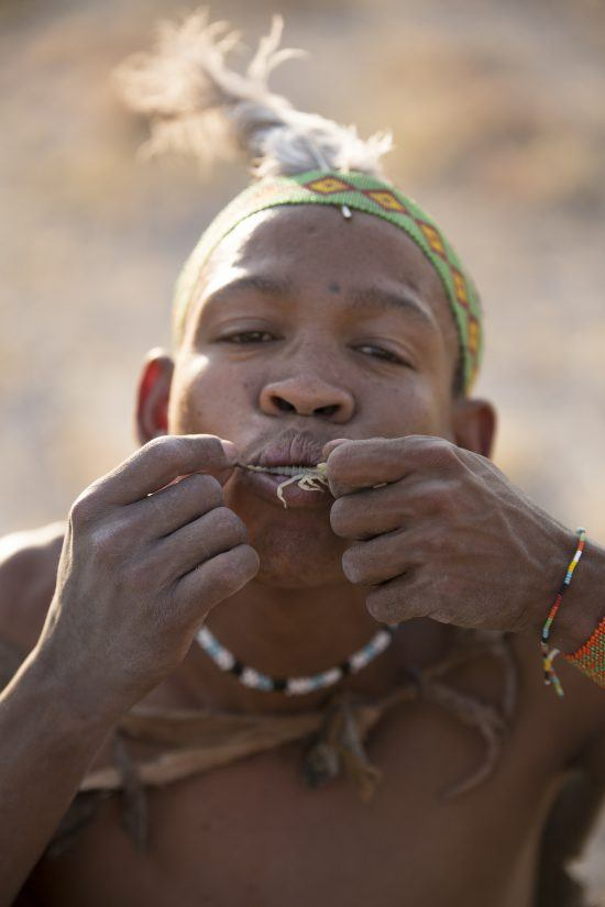 A bushman eating a scorpion