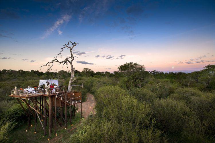 La casa del árbol Chalkley en la Reserva de Animales Lion Sands junto al Kruger