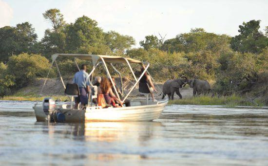 Paseos en barca y avistamiento de animales