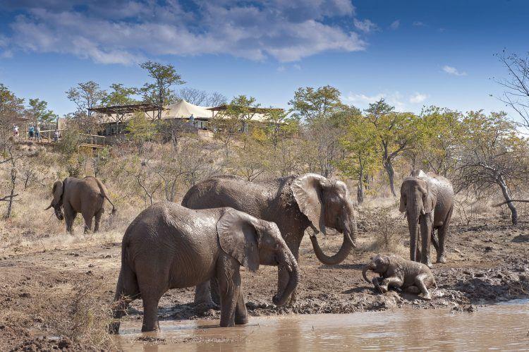 Fachada de The Elephant Camp en las cataratas Victoria