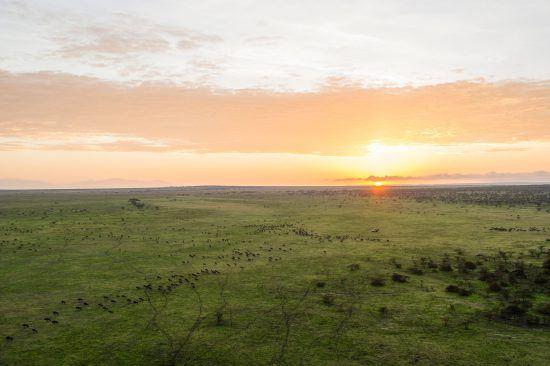 Die Serengeti von oben bei Sonnenuntergang