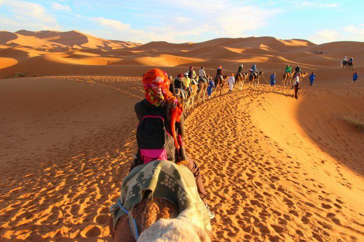 Caravana passeia pelo deserto do Saara - Pixabay