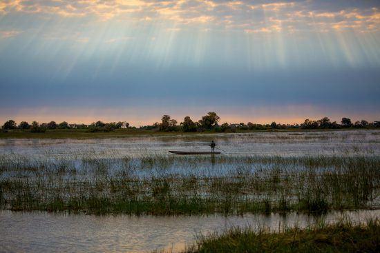 A mokoro glides across the Okavango Delta