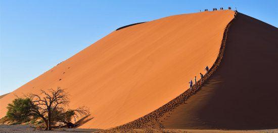 Die roten Dünen bei Sossusvlei - Afrikas Nationalparks