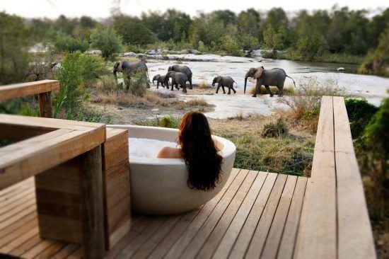 Campements du Parc Kruger | La baignoire en pierre blanche des Private Granite Suites et une famille d'éléphant passant par là