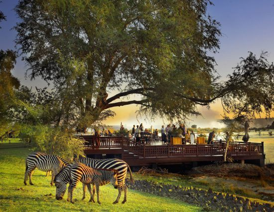 Sundowners at Royal Livingstone with zebras nearby