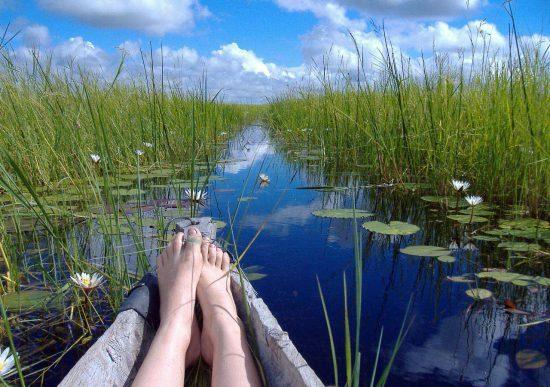 Canoa percorre Delta do Okavango de forma pacífica