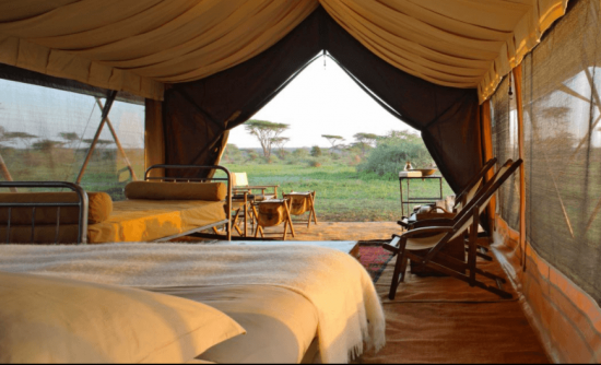 Serengeti Under Canvas andbeyond tent