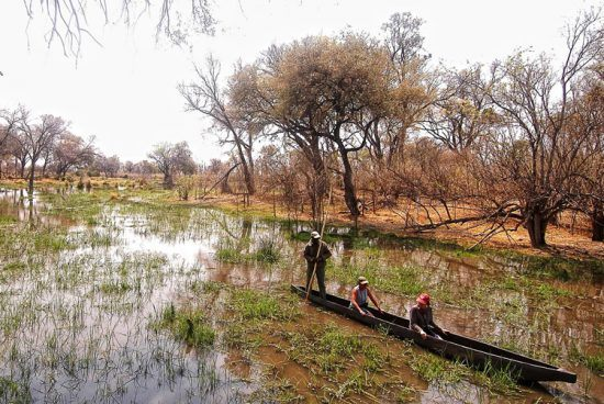 """""""Mokoro"""", uma embarcação tradicional do Botsuana, convida viajantes a uma exploração serena da natureza"""
