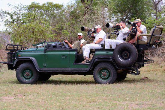 Veículos adaptados facilitam o trabalho de fotógrafos em busca dos melhores cliques de vida selvagem