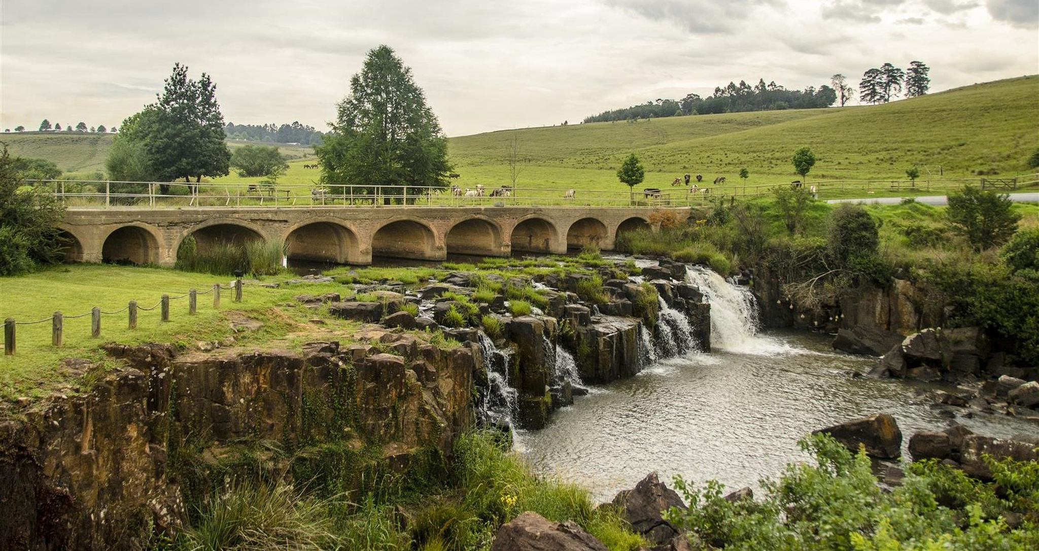 Top Things To Do On The Midlands Meander Rhino Africa
