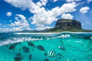 L'île Maurice, une des îles de l'océan Indien