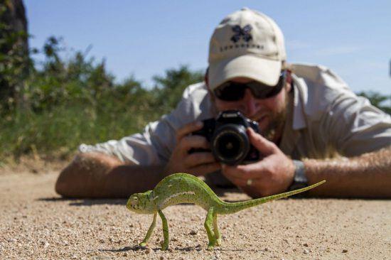 Membro da equipe do Londolozi fotografando animal