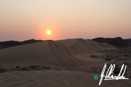 Sunset over the dunes of the Kalahari of Namibia