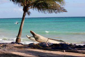 Boutre échoué sur une plage de Zanzibar, Tanzanie