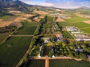 Prise de vue aérienne du domaine et jardin verdoyant de Babylonstoren