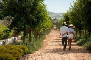 Promenade romantique à deux dans les allées fleuries du jardin de Babylonstoren.