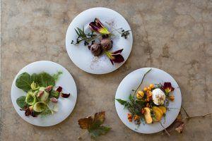 Plats gourmets et colorés au restaurant Babel chez Babylonstoren.