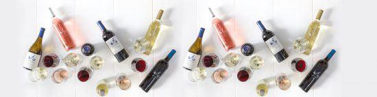 Variedad de vinos para disfrutar de tu día en los viñedos