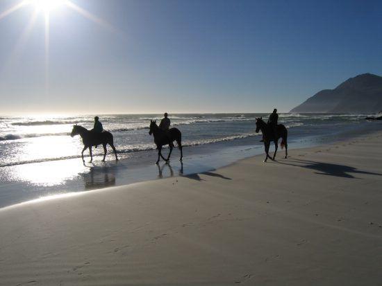 Horse riding on Noordehoek Beach