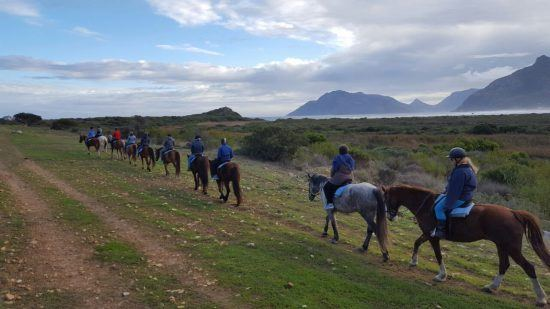 Horse riders making their way to Noodhoek Beach in Cape Town
